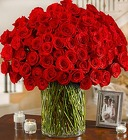 100 Premium Red Long Stem Roses in a Vase From Stellar, your flower shop in Sylvania, OH
