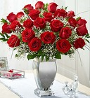 Premium Long Stem Red Roses in Silver Vase From Stellar, your flower shop in Sylvania, OH