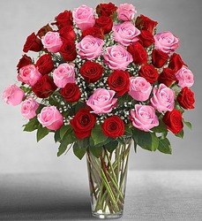 Ultimate Elegance - Long Stem Pink and Red Roses From Ka'bloom, your flower shop in Sylvania, OH