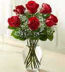 Love's Embrace Roses - Red From Stellar, your flower shop in Sylvania, OH