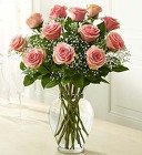 Rose Elegance - Premium Long Stem Pink Roses From Stellar, your flower shop in Sylvania, OH