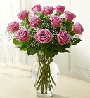 Rose Elegance - Premium Long Stem Purple Roses From Ka'bloom, your flower shop in Sylvania, OH
