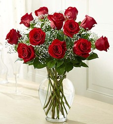 Rose Elegance - Premium Long Stem Red Roses From Stellar, your flower shop in Sylvania, OH