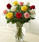 Premium Long Stem - Assorted Roses From Ka'bloom, your flower shop in Sylvania, OH