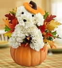 A-DOG-able For Fall From Stellar, your flower shop in Sylvania, OH