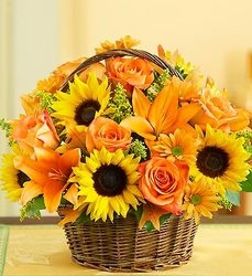 Fields of Europe for Fall Basket From Stellar, your flower shop in Sylvania, OH
