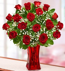 Blooming Love - Premium Red Roses in Red Vase From Stellar, your flower shop in Sylvania, OH