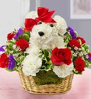 Love Pup From Stellar, your flower shop in Sylvania, OH