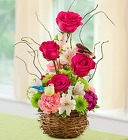 Springtime Bird's Nest of Flowers From Ka'bloom, your flower shop in Sylvania, OH