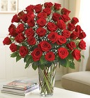Ultimate Elegance - Premium Long Stem Roses  From Ka'bloom, your flower shop in Sylvania, OH