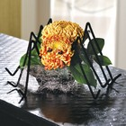 Spidermum From Ka'bloom, your flower shop in Sylvania, OH