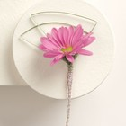 Pink Dreams Daisy Boutonniere From Stellar, your flower shop in Sylvania, OH