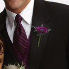 Purple Passion Boutonniere From Stellar, your flower shop in Sylvania, OH