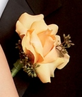 Peach Waterfall Boutonniere From Stellar, your flower shop in Sylvania, OH