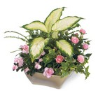 Garden of Grace Planter From Stellar, your flower shop in Sylvania, OH