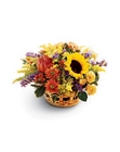 Autumn Medley Basket From Stellar, your flower shop in Sylvania, OH