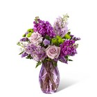 The FTD Sweet Devotion Bouquet by Better Homes and Gardens From Stellar, your flower shop in Sylvania, OH
