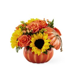The FTD Harvest Traditions Pumpkin From Stellar, your flower shop in Sylvania, OH