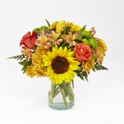 Golden Hour Bouquet From Stellar, your flower shop in Sylvania, OH