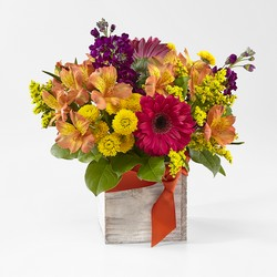 Punch Bowl Bouquet From Stellar, your flower shop in Sylvania, OH