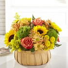 The FTD Harvest Sunflower Basket  From Stellar, your flower shop in Sylvania, OH